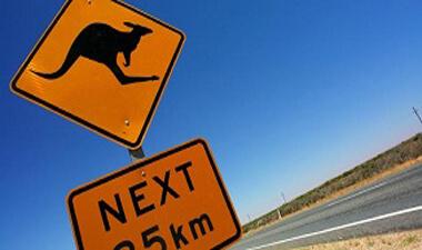 Temporary Graduate visas Visa Australia Moving Migration Visas