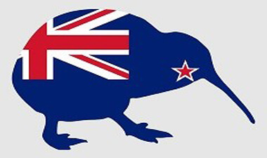 New Zealanders Jobs Migrants Skilled Work Trade Qualified Employer Sponsored Visas RSMS ENS